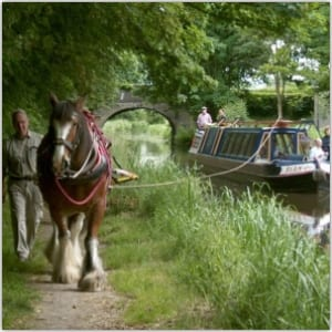 Canal People – Joint meeting with Bracknell & Wokingham
